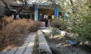 پیشنهادی برای حفظ خانه «نیما یوشیج»