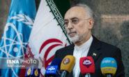 صالحی: زیرساخت ایجاد چند صدهزار سو در نطنز آماده است/ اقدامات جدید ایران خلاف برجام نیست