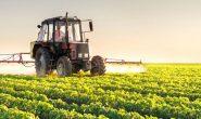 ۵۰ محصول پرکاربرد نانویی در کشاورزی روانه بازار شده است