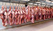 کاهش ۳۰ درصدی تقاضا برای گوشت قرمز